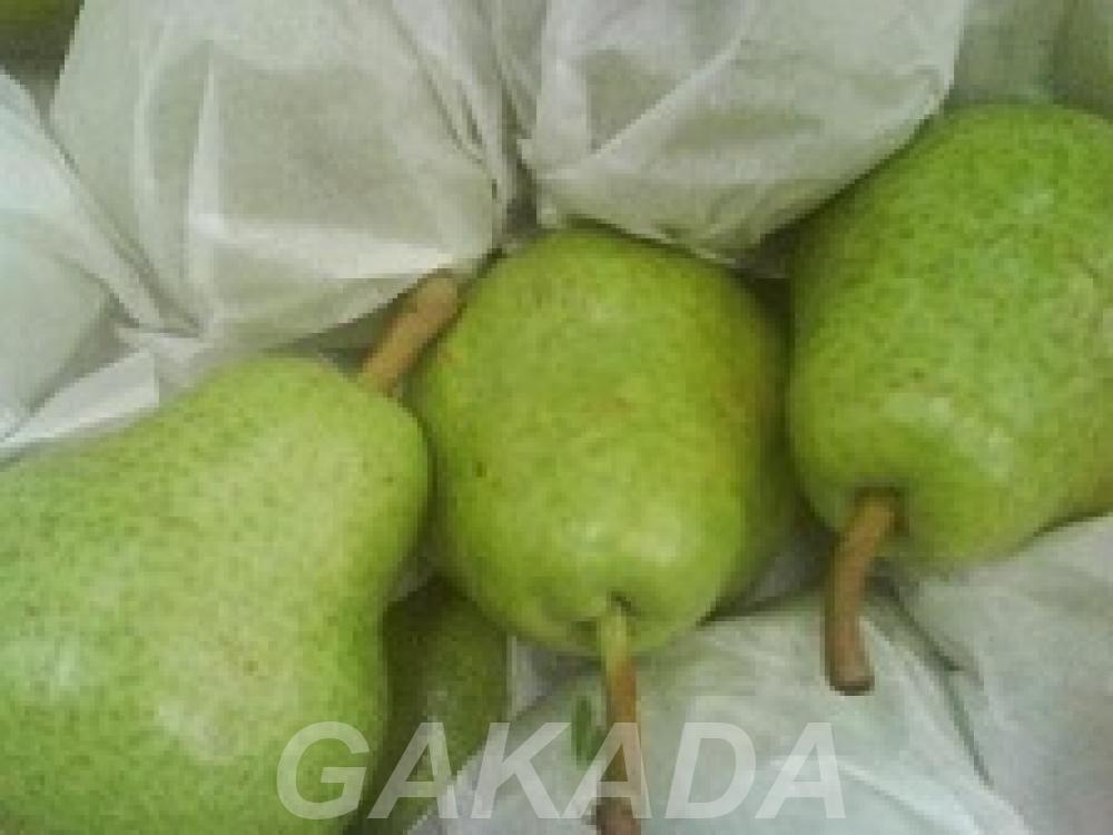 Предлагаю прямые поставки груши из Аргентины, Вся Россия