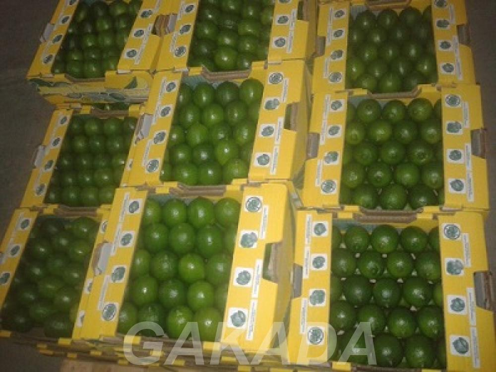 Предлагаем лимон, лайм из Бразилии., Вся Россия