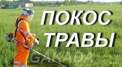 Скошу траву на вашем участке, Домодедово