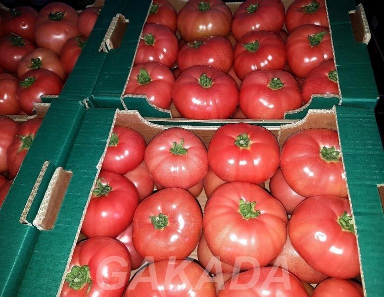 Продаем помидоры оптом в краснодарском крае помидоры оптом,  Краснодар