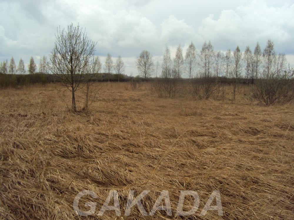 Продам земельный участок в Тверской области, Зубцов