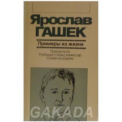 Страстный публицист Ярослав Гашек, Вся Россия