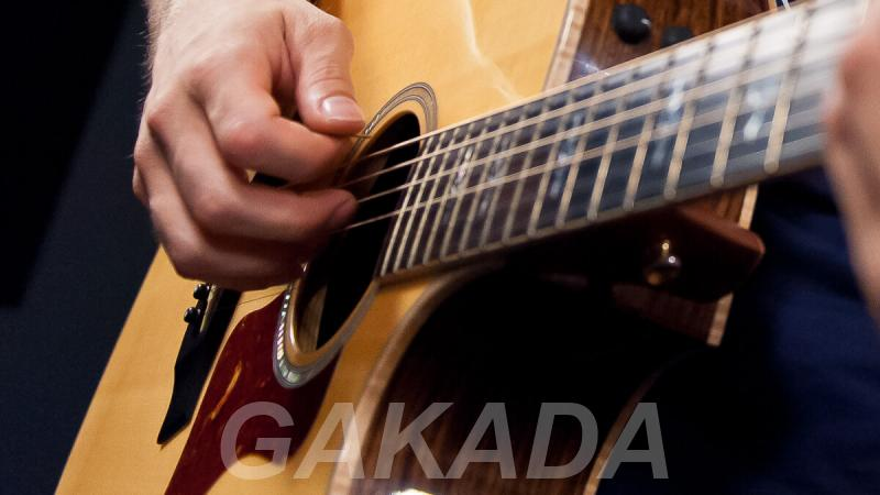 Уроки гитары по скайпу,  Санкт-Петербург