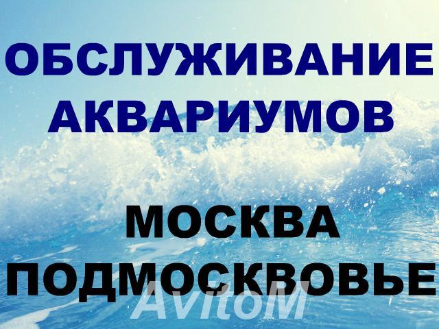 Обслуживание аквариумов,  Москва