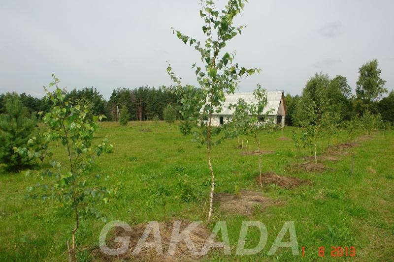 Земля для фермерского хозяйства, Мосальск