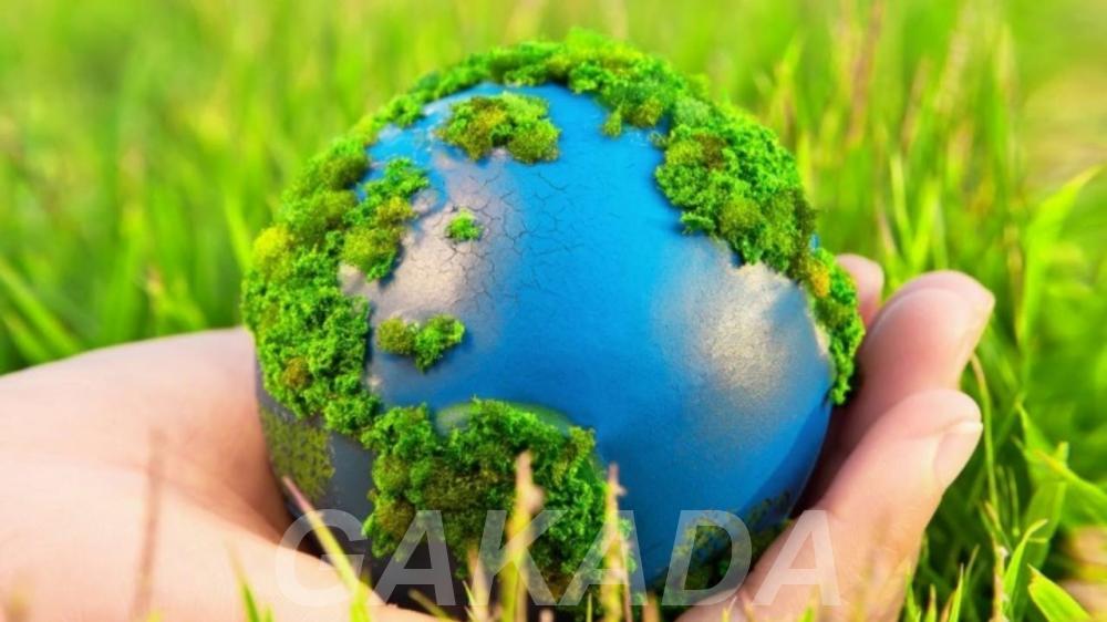 ООО Регионпром утилизация промышленных отходов,  Рязань
