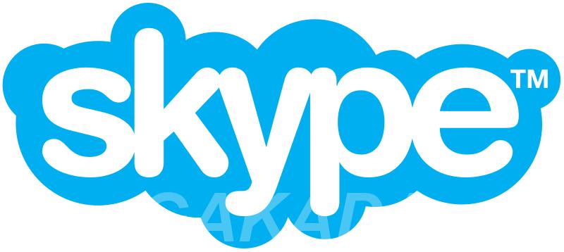 Уроки иностранного языка по Skype, Вся Россия