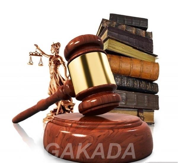 Консультация профессионального юриста,  Санкт-Петербург