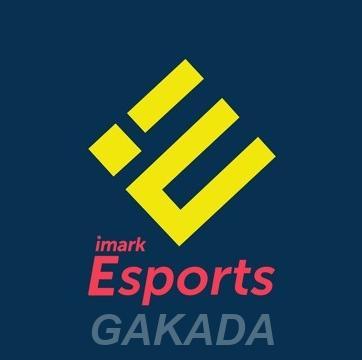 Imark Esports самое крупное киберспортивное медиа агентств,  Москва