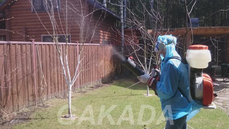 Опрыскивание растений, Ногинск